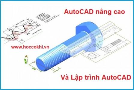 AutoCAD Nâng Cao và Lập Trình AutoCAD